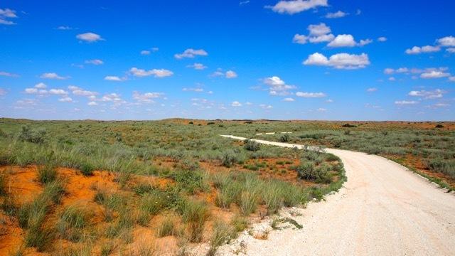 Sanddünenketten in der Kalahari, Fotografie Sabine Lueder