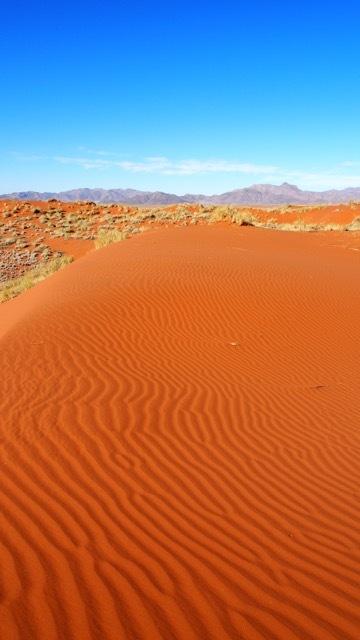 Rote Dünenlandschaft, NamibRand Nature Reserve Namibia © Foto Sabine Lueder